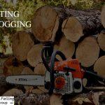tree cutting harare