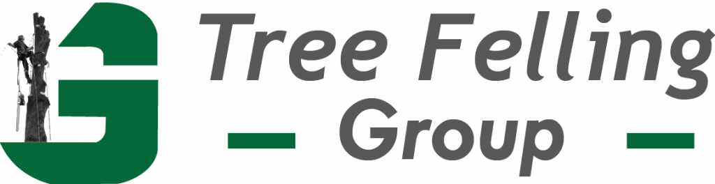 tree felling group harare